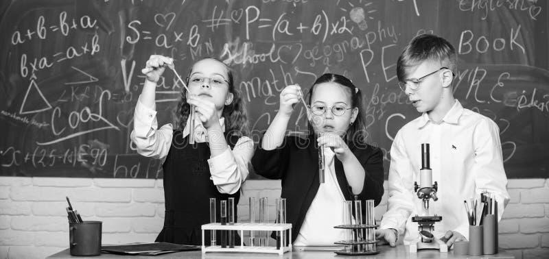 小组有试管的学校学生学习化工液体 r 提供实验的女孩和男孩以 免版税库存图片