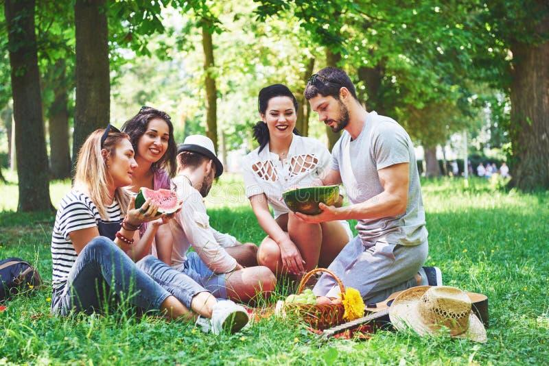 小组朋友有野餐在一个公园在一个晴天-停留的人们,获得乐趣,当烤和放松时 免版税库存照片