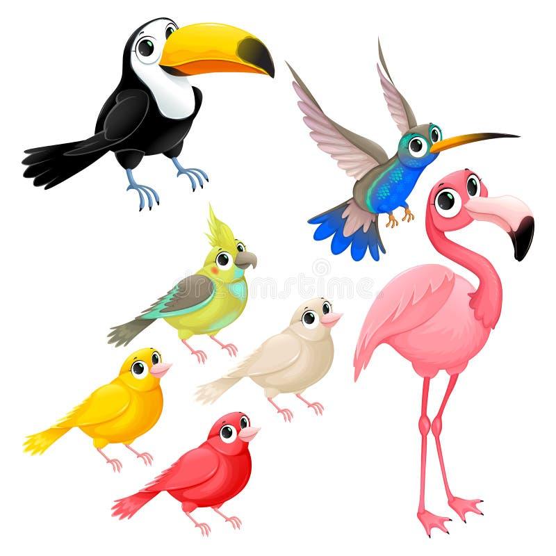 小组滑稽的热带鸟 向量例证