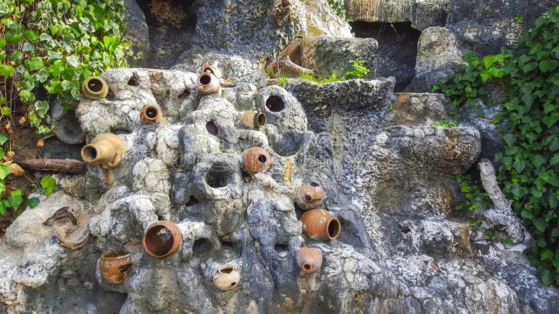 小组瓦罐,在墙壁上的花盆有植物的 Octo 免版税库存照片