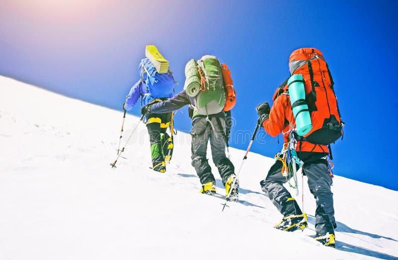 小组登山人到达山峰上面  上升和 免版税库存照片