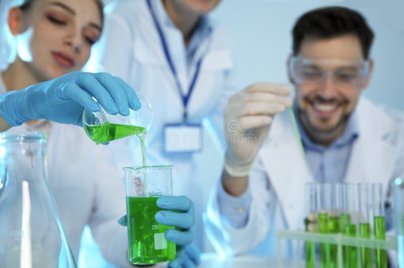 小组科学家与样品一起使用在化学实验室 库存照片