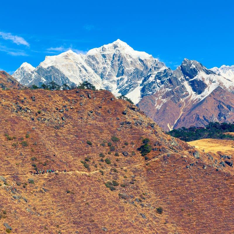 小组老牛慢慢地沿往珠穆琅玛观点的山道路提高 Solu Khumbu,萨加玛塔NP,尼泊尔 免版税图库摄影