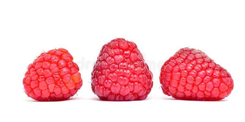 小组莓在白色背景的果子孤立 免版税库存图片