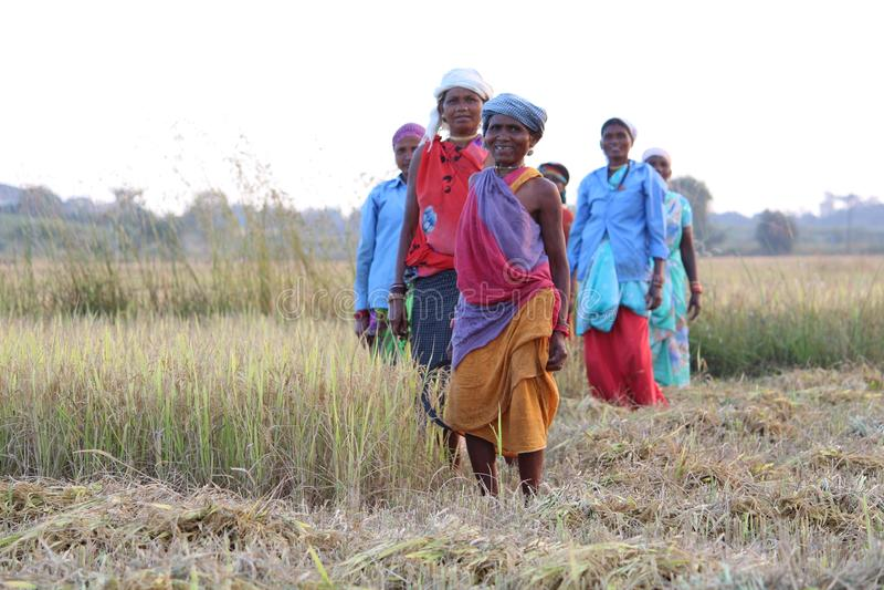 小组观看在与微笑的照相机的农夫妇女 免版税库存图片