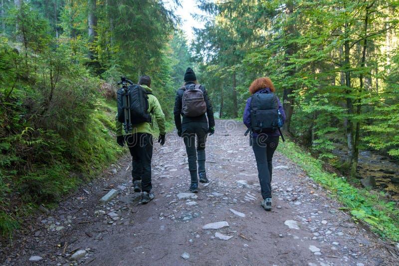 小组足迹的远足者 图库摄影