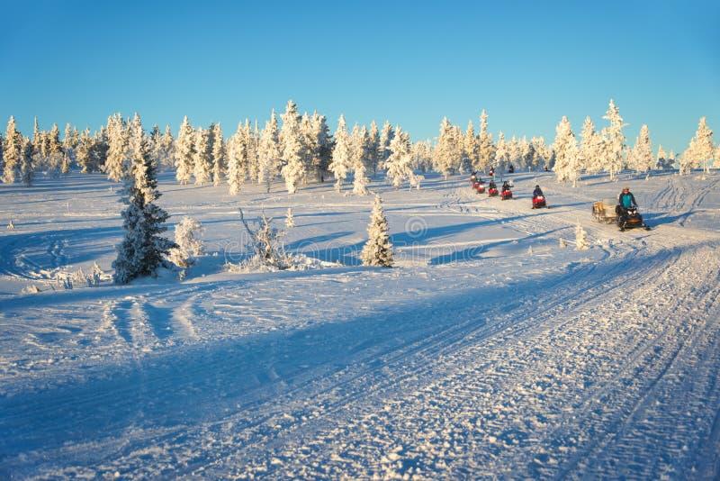 小组雪上电车在拉普兰,在Saariselka芬兰附近 免版税库存照片