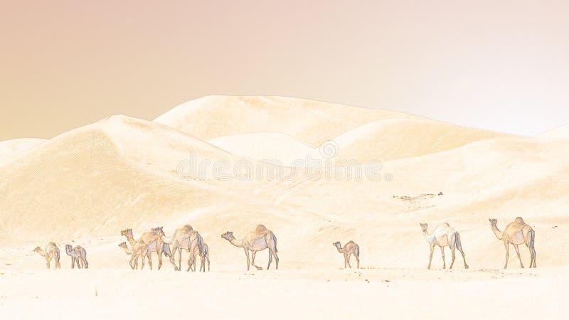小组骆驼在日落的沙漠 免版税库存照片