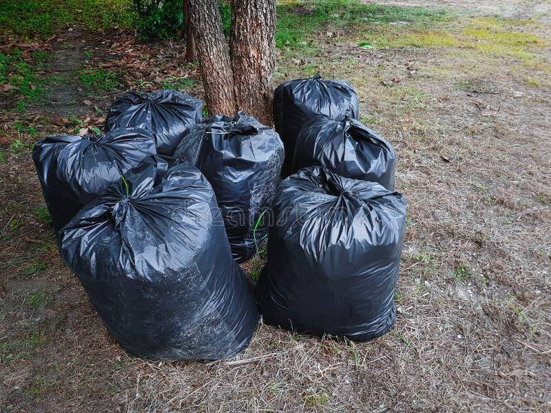 小组黑塑料袋充满在草地的垃圾 免版税库存照片