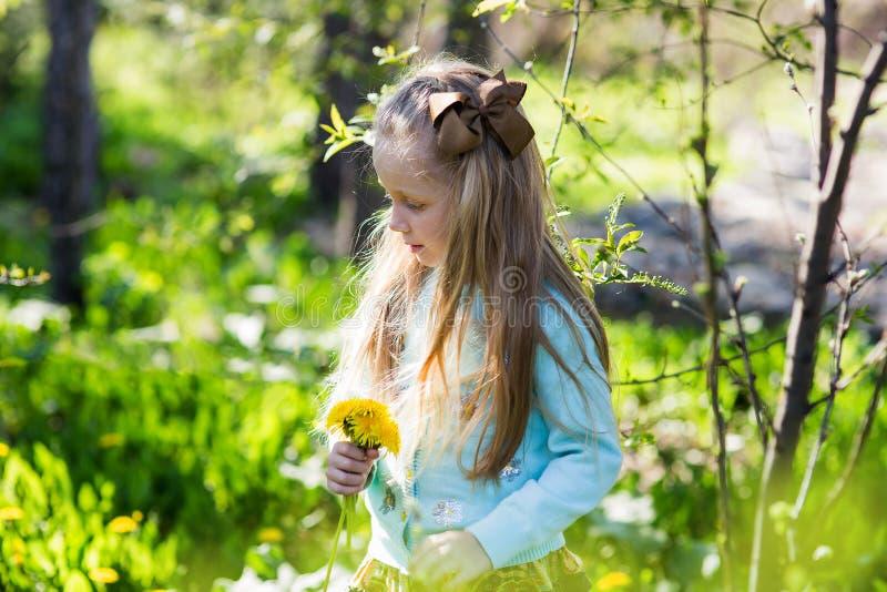 小美丽的女孩在开花的树中的公园收集蒲公英 有长的头发的孩子在他的手上拿着花束 免版税库存照片