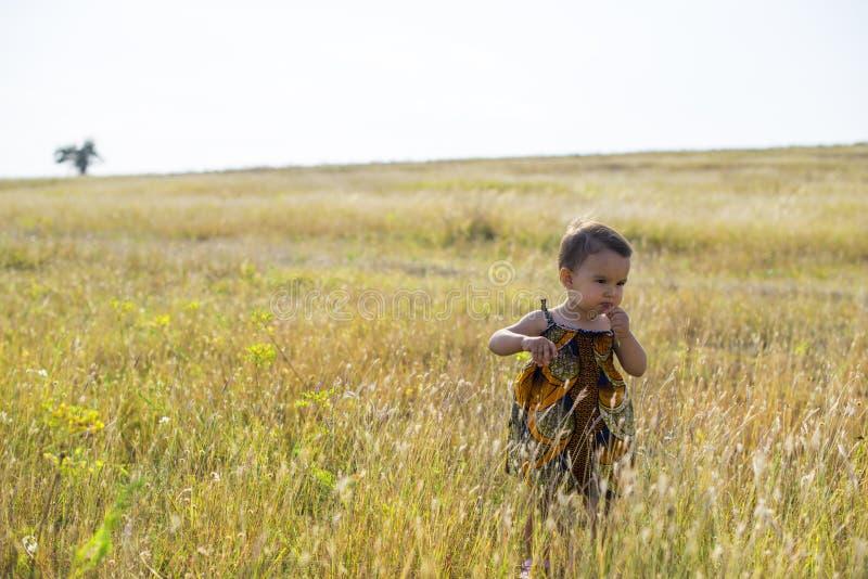 小美丽的女孩通过高,秋天草走 免版税库存照片