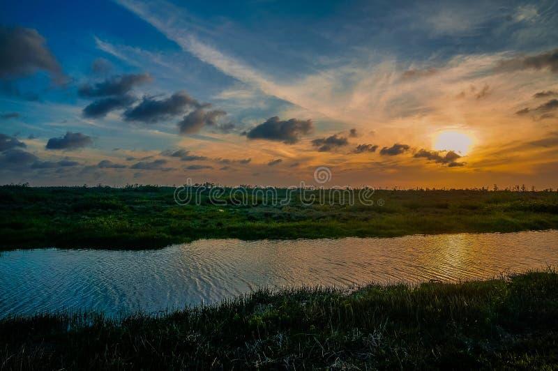 小船和日落在沼泽 免版税图库摄影