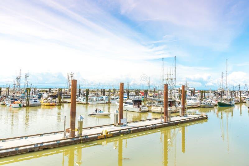 小船和船坞Steveston渔夫` s码头的 库存图片