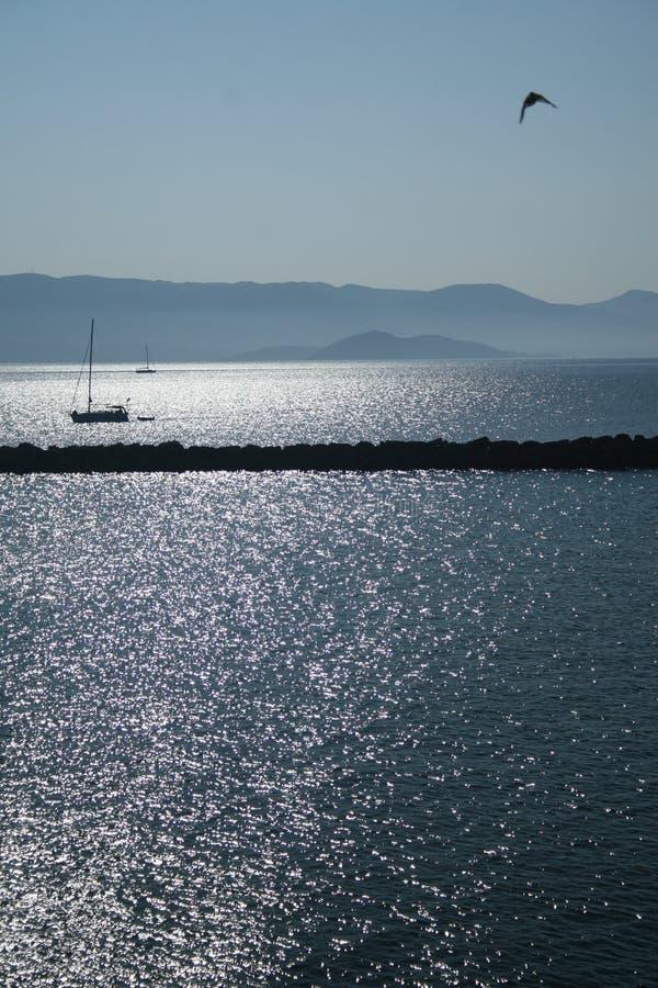 小船和鸟在海 免版税库存图片