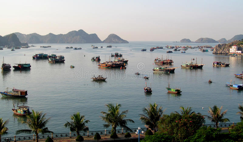 小船在一个港口在Catba海岛,越南 库存图片