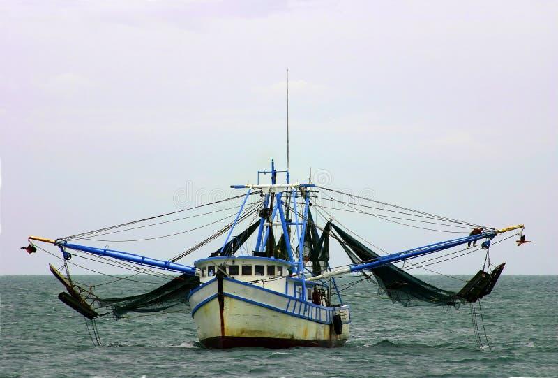 小船捕网虾 库存图片