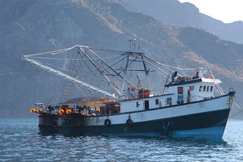 小船捕鱼墨西哥 免版税库存图片