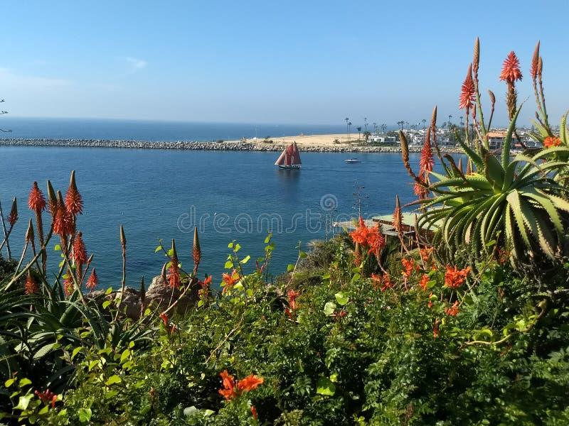 小船航行看法在纽波特港口,加利福尼亚 免版税库存照片