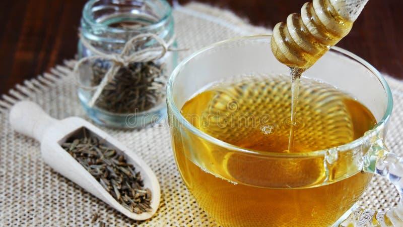 小茴香籽茶用减重特写镜头的蜂蜜 免版税库存图片