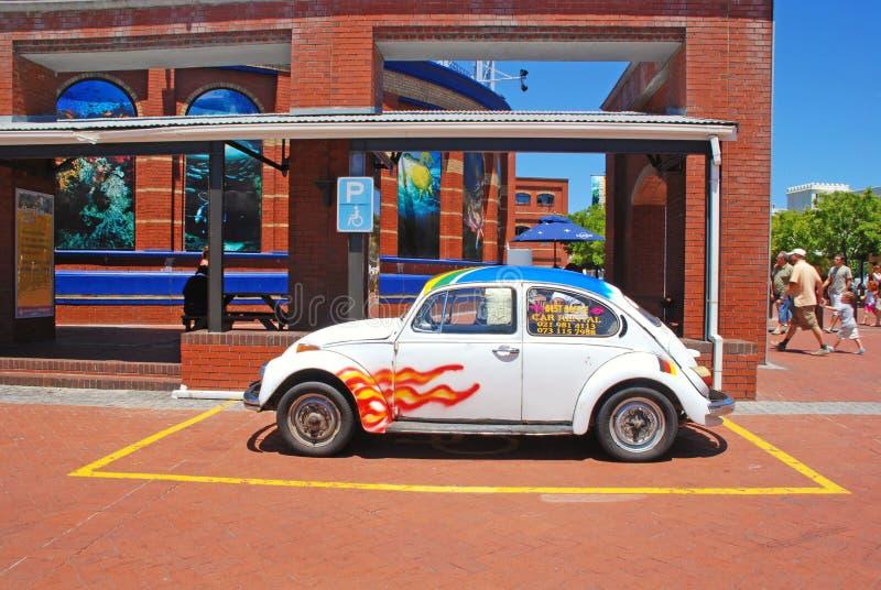 小葡萄酒汽车,开普敦,南非 免版税库存图片