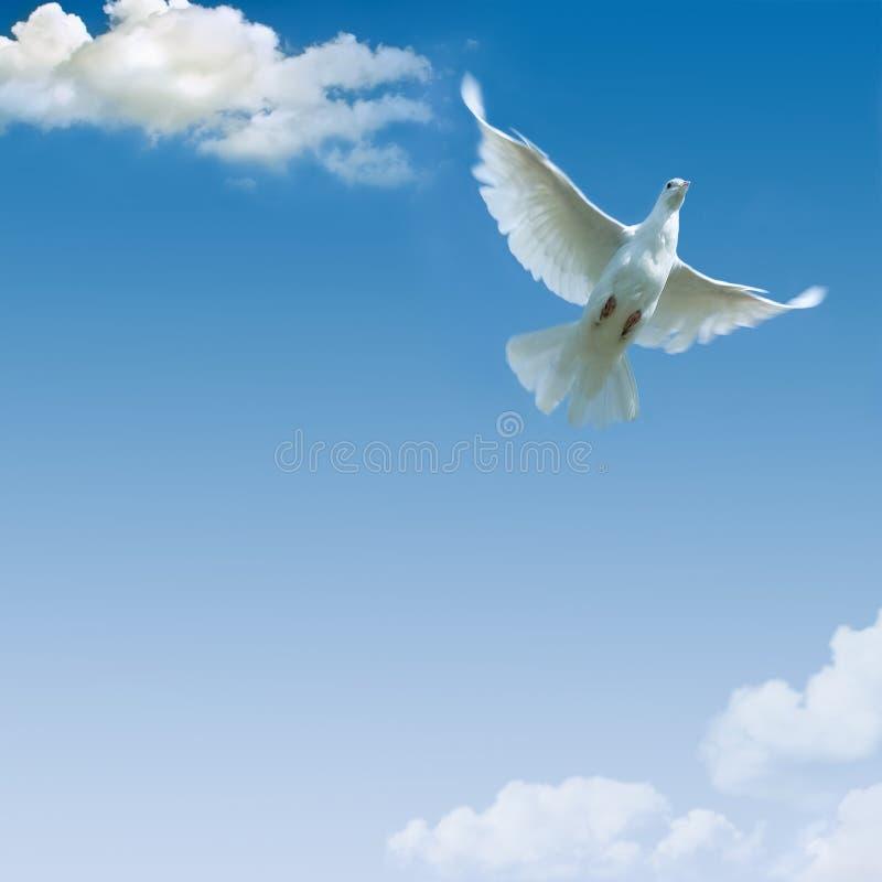 小蓝色云彩批次的天空 免版税库存照片