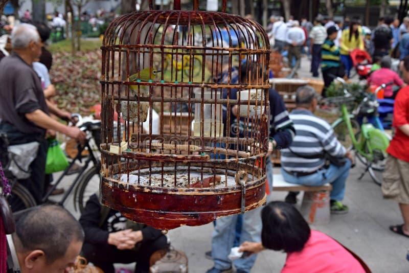 小行政区,中国-大约2018年3月:BirdÂ的市场在城市公园 库存照片