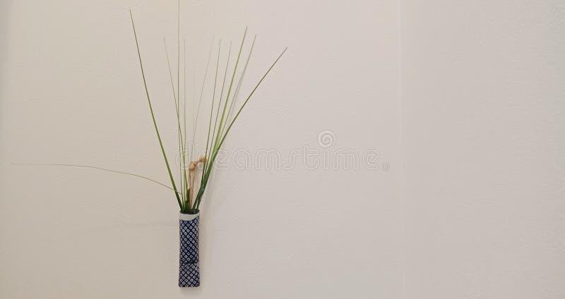小装饰植物 免版税图库摄影
