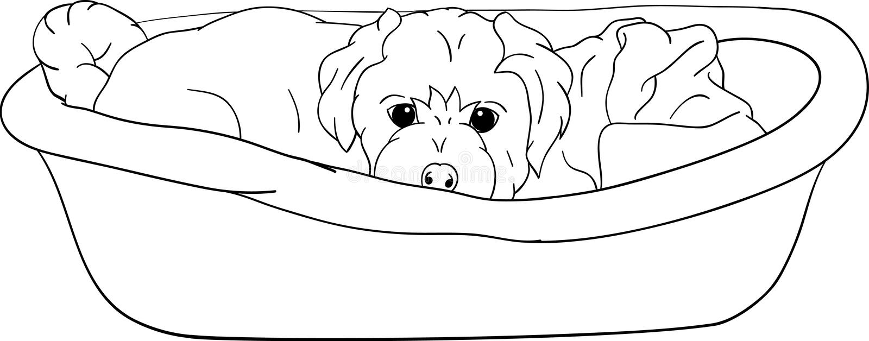 小轻便小床位于的小狗 库存例证