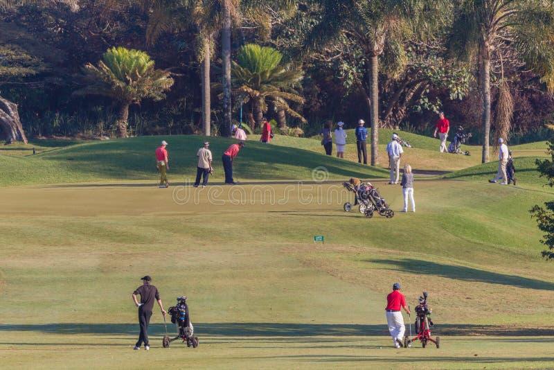 小辈高尔夫球运动员孔绿色等待的戏剧 库存图片