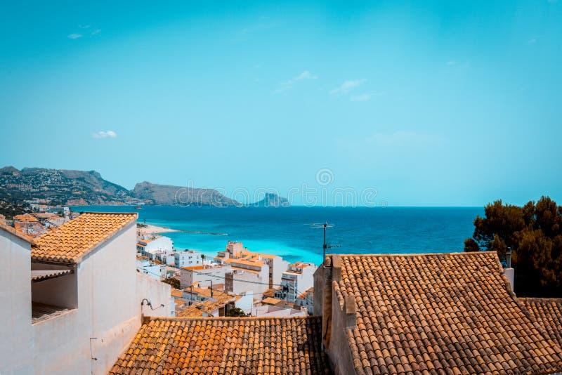 小野鸭和肋前缘布朗卡的橙色神色从俯视的在阿尔特阿,西班牙指向 库存照片
