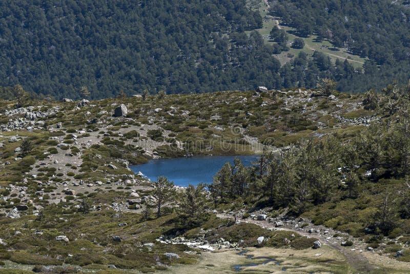 小高山湖在春天 库存照片