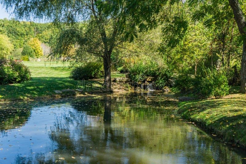位于小公园和瀑布的小鱼池图片