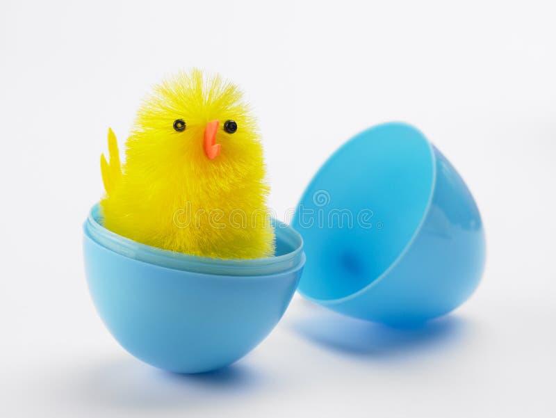小鸡孵化的复活节彩蛋  免版税库存照片