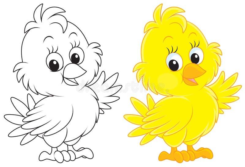 小鸡 向量例证