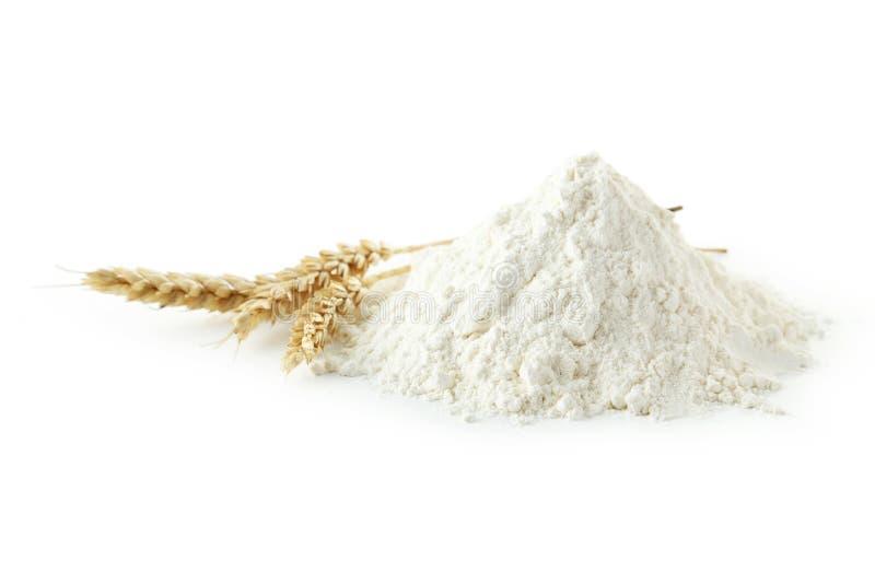 小麦面粉堆与在白色隔绝的小尖峰的 免版税库存照片