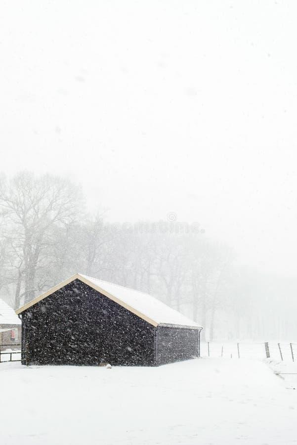 小黑木谷仓在降雪期间的多雪的乡下 免版税库存图片