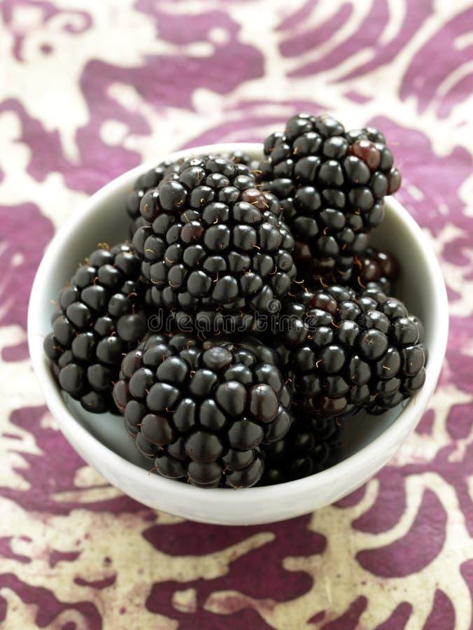 小黑莓的碗 库存图片