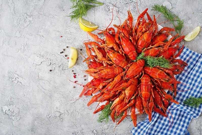 小龙虾 红色煮沸了在桌在土气样式,特写镜头上的crawfishes 库存图片