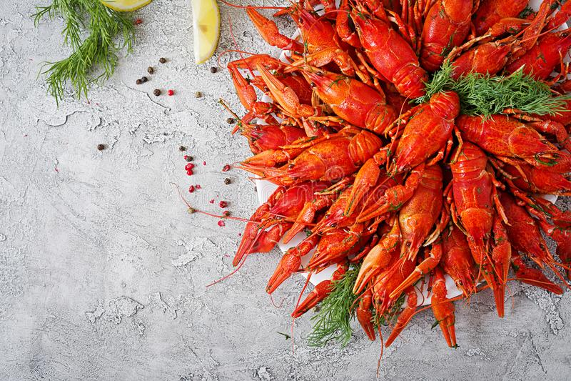 小龙虾 红色煮沸了在桌在土气样式,特写镜头上的crawfishes 免版税库存图片