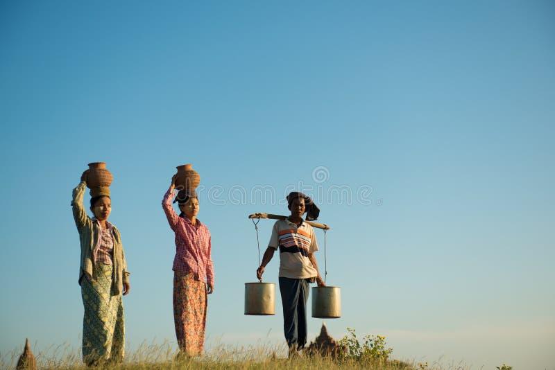 小组亚裔传统农夫 免版税库存图片