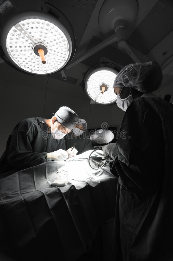 小组兽医腹腔镜外科的医生运转中室 库存图片