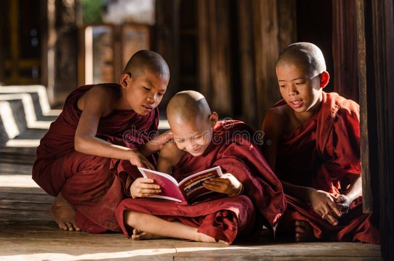 小组在寺庙的缅甸年轻修士阅读书 图库摄影
