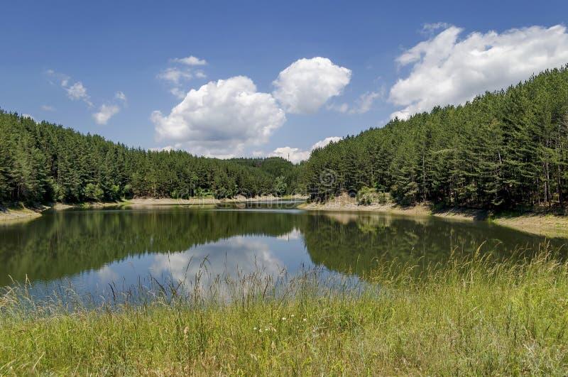 小水坝或水库在美丽的山Plana 免版税库存照片