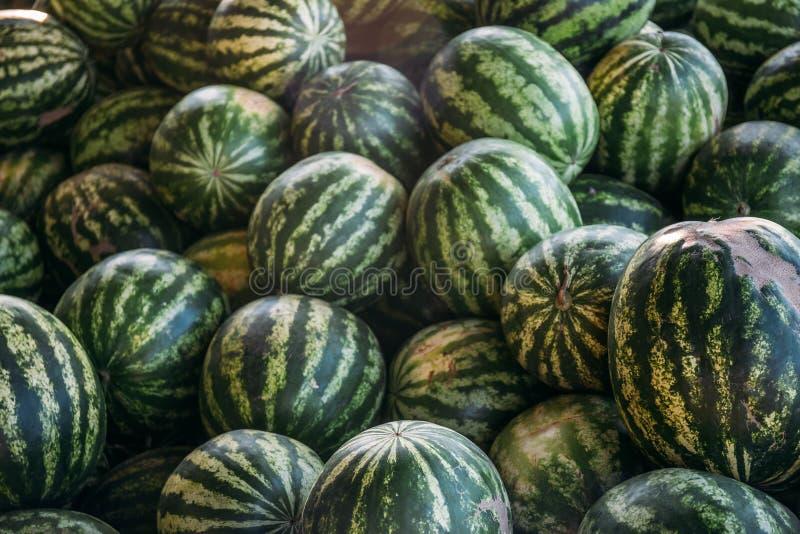 小组大甜绿色西瓜 免版税图库摄影