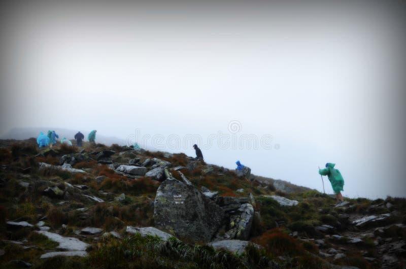 小组登山人到达山峰上面  上升和登山体育 配合概念 库存图片