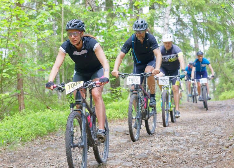 小组登山车骑自行车者在循环的森林里下坡 免版税库存照片