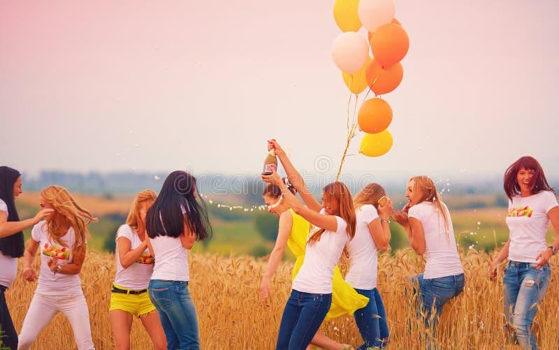 小组有瓶的愉快的妇女在夏天领域的香槟 免版税库存照片