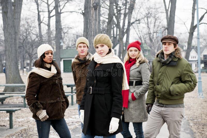 小组年轻朋友外面在冬天 免版税图库摄影