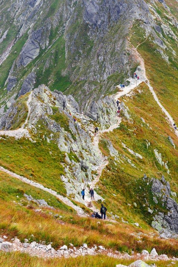 小组游人在Szpiglasowy走Wierch的上面在Tatra山的 免版税库存照片