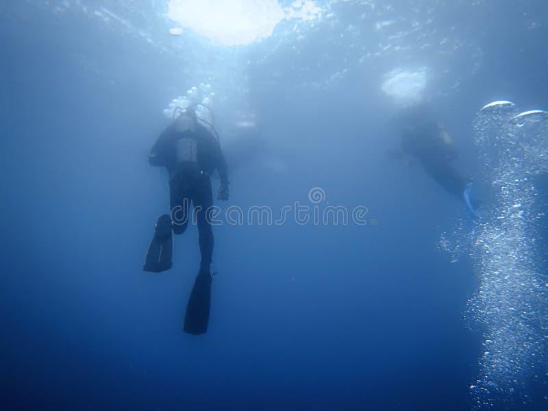 小组潜水者水下的背景 图库摄影